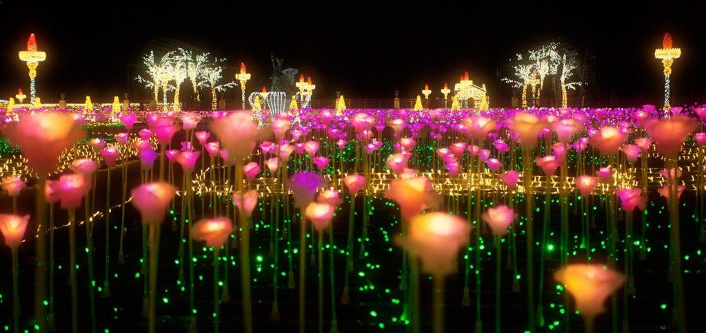 Królewski Ogród Światła