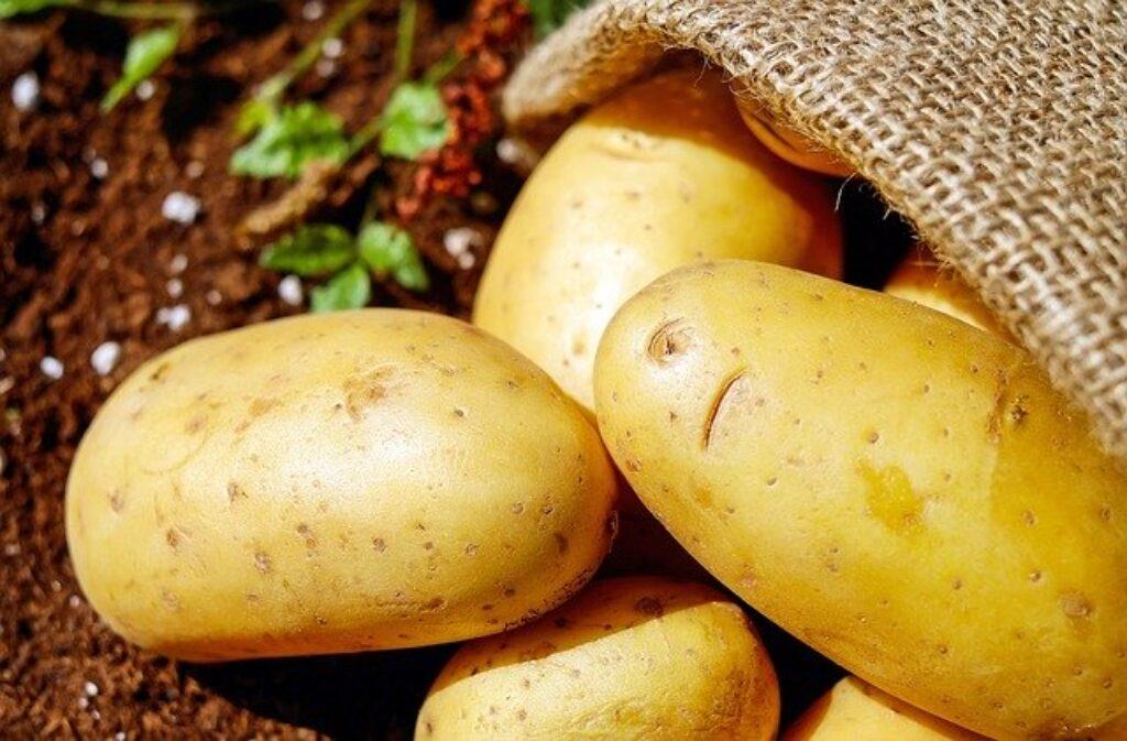ziemniaków nie przechowuj w lodówce