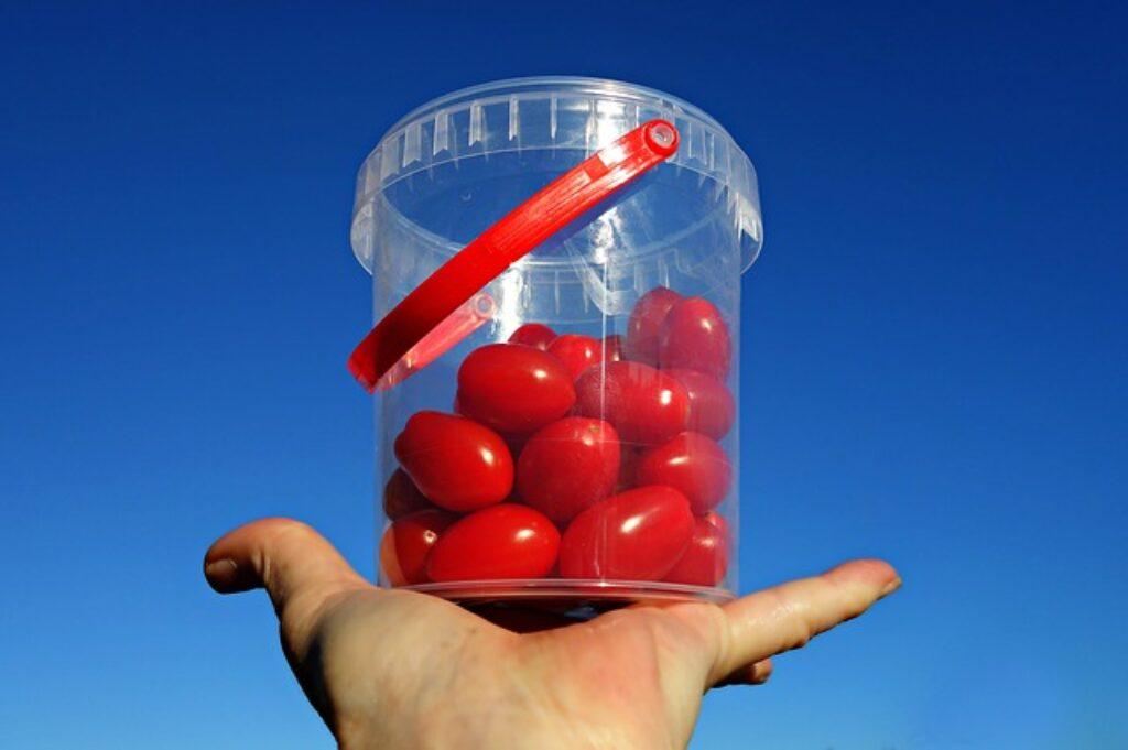 komu szkodzą pomidory
