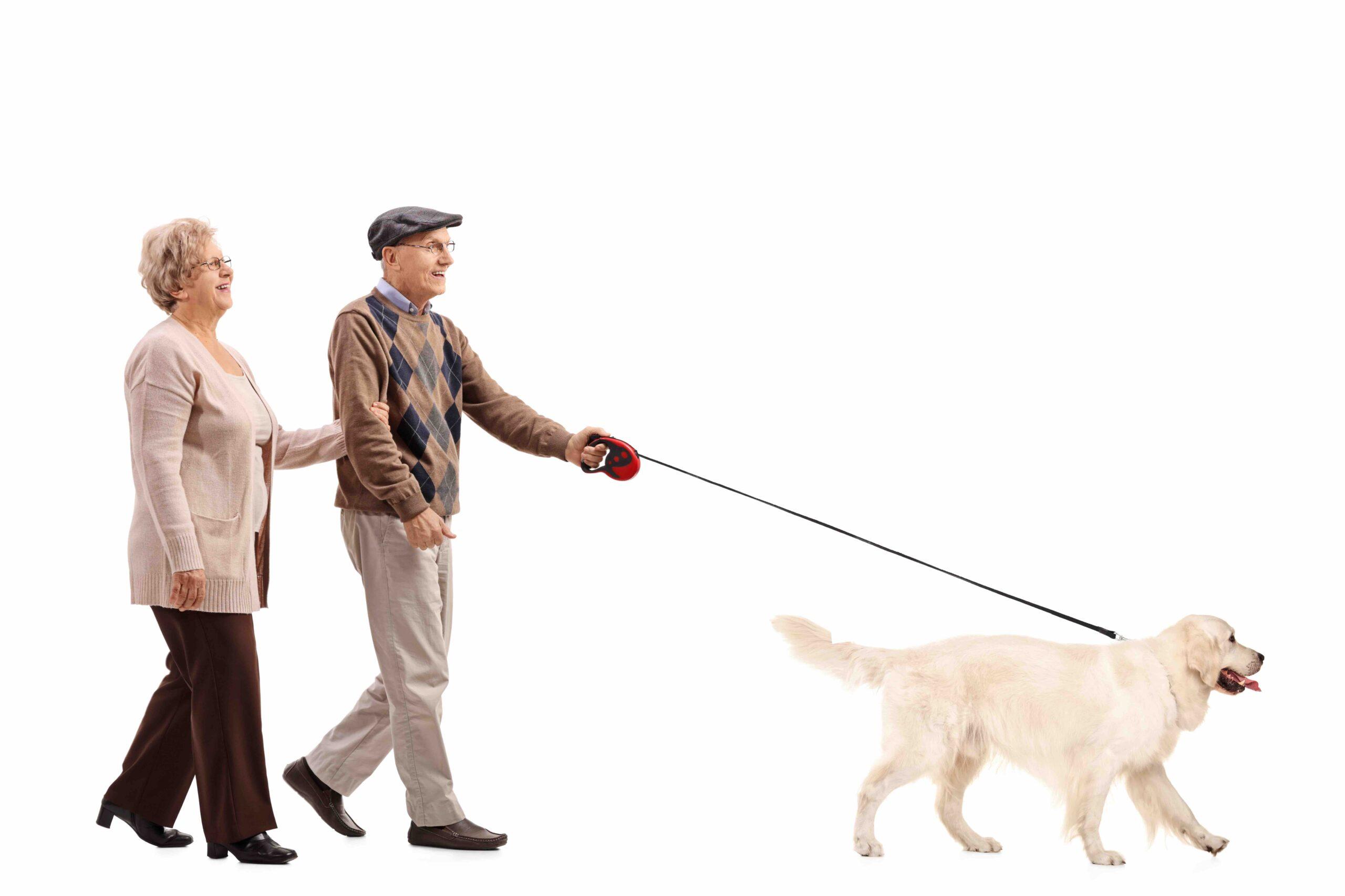 spacer seniorów z psem